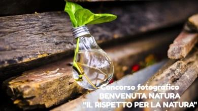 "Photo of Concorso fotografico ""Benvenuta natura"" a Romagnano Sesia"