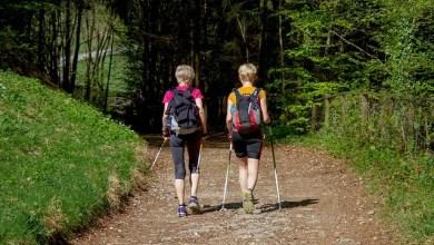 Photo of Oasi Zegna: Nordic Walking