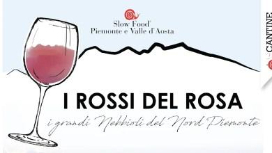 Photo of I rossi del Rosa edizione 2019