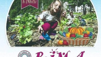 """Photo of A Rima (Alto Sermenza) riprende """"L'Orto dei Bambini"""""""