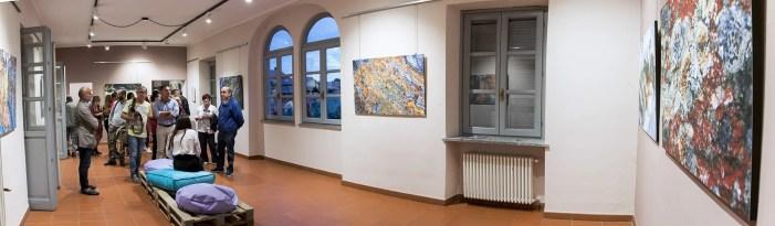 Spazio espositivo mostra Pastore a Gattinara
