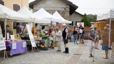 Photo of Fontaneto d'Agogna: un successo la Fiera della Cipolla bionda 2020