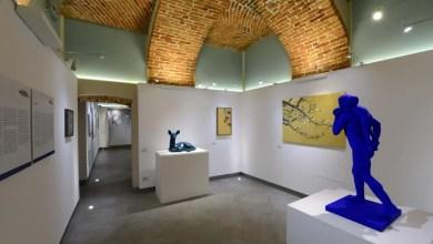 Photo of Biella: due interessanti esposizioni a Selvatica Arte e Natura in Festival