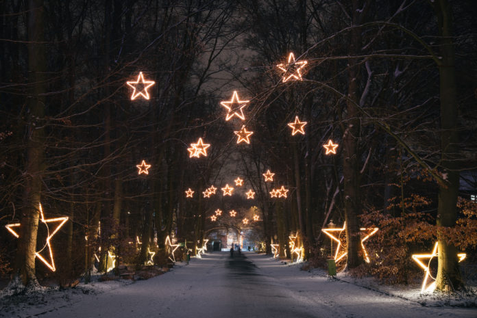Christmas Garden, Berlin,Event,Eislaufen,Musik,Lichterfest,VisitBerlin,BerlinEvent