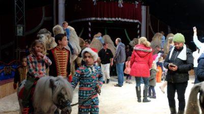 #VisitBerlin,Tiere, Berlin.#Weihnachtscircus, Freizeit, Gebrüder Wille, Kultur, Unterhaltung, Williams Weihnachtscircus