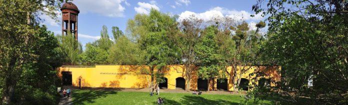 Natur-Park Schöneberger Südgelände,Berlin,#VisitBerlin,SommerTagsTraum,Treiben lassen,Freizeit,Unterhaltung