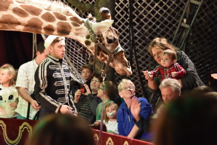 Berlin,#Weihnachtscircus ,Freizeit,Unterhaltung,News,Kultur,#Weihnachtscircus