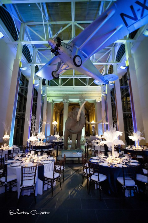 History Museum wedding reception with overhead airplane and giant mastadon