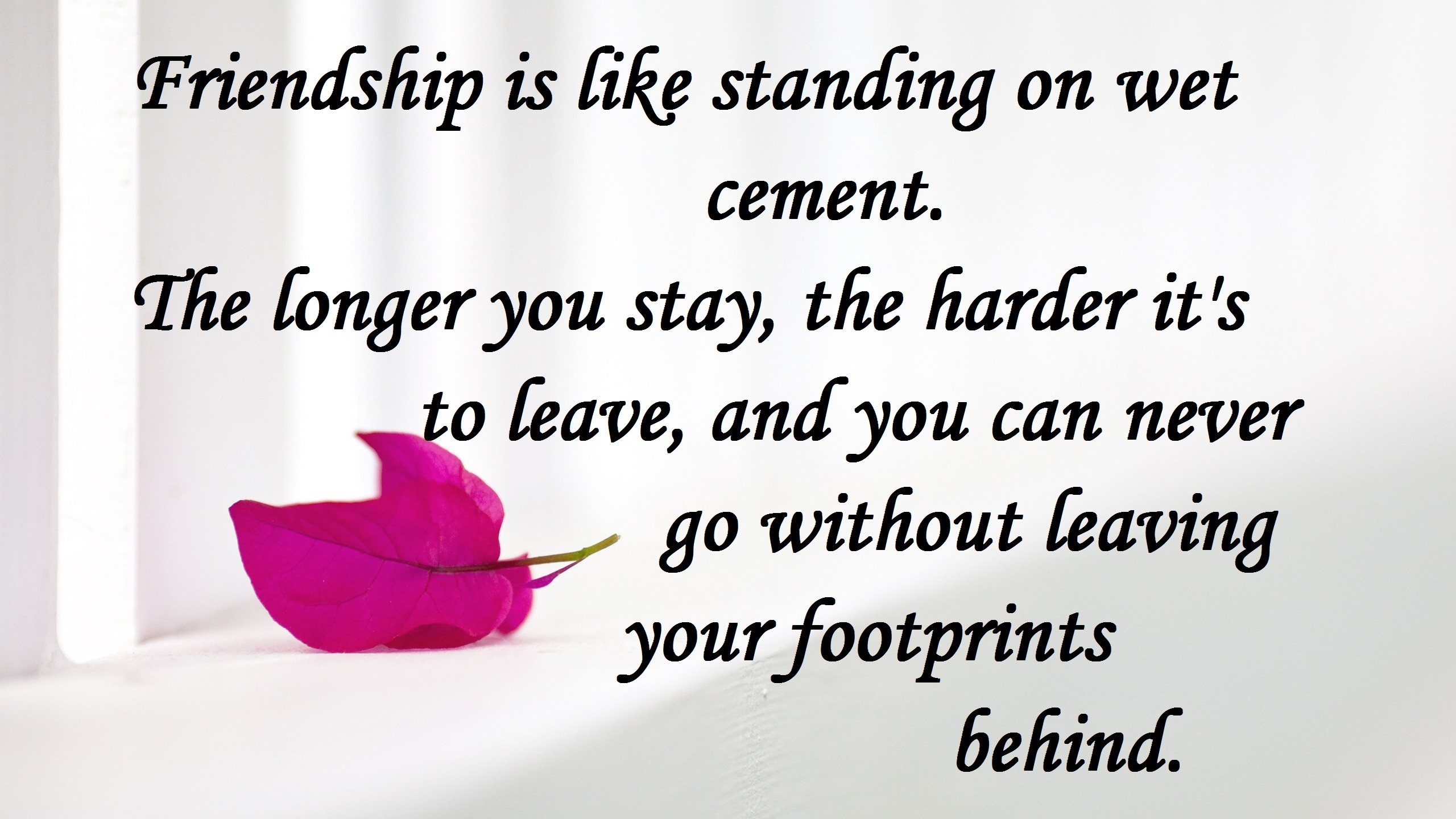 Beautiful Quotes About Friendship Beautiful Friendship Quotes 2017 Hd Images Free Download