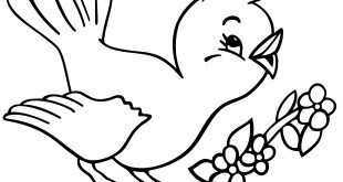 sparrow image colouring pages