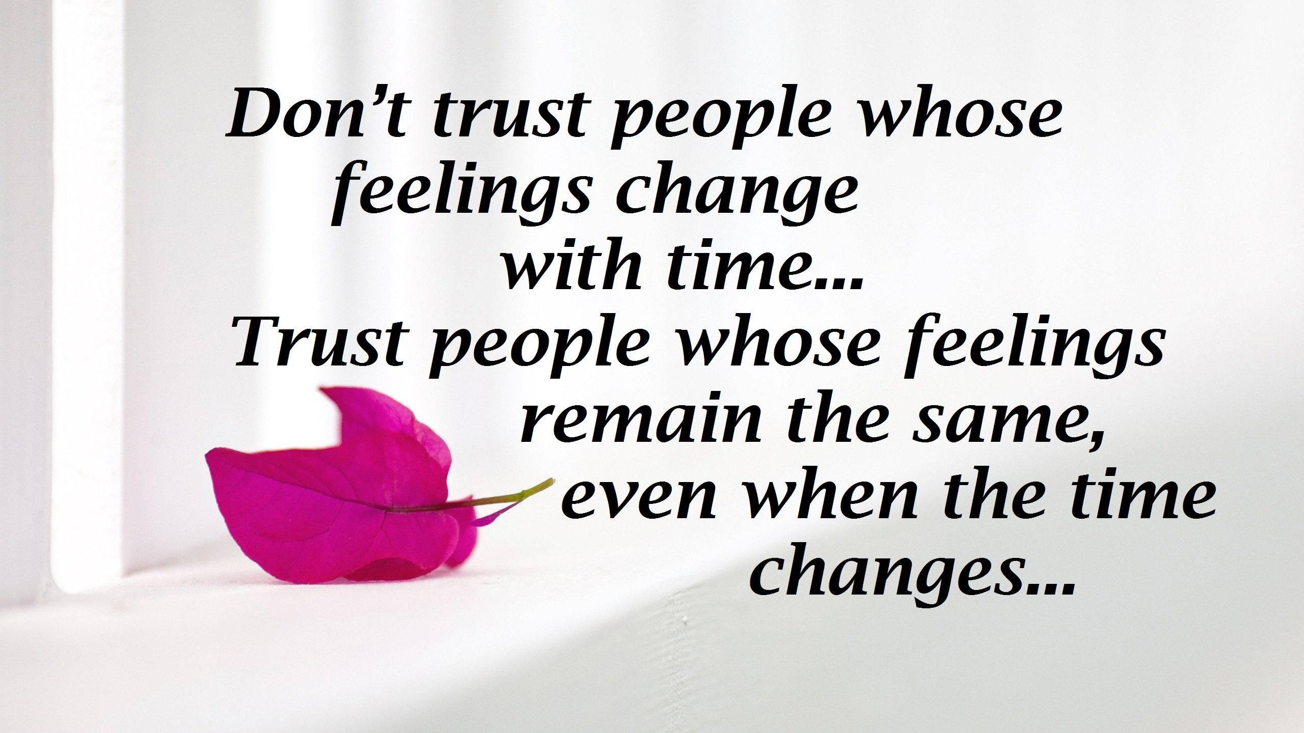 Beautiful Trust Quotes Images & Pictures free download