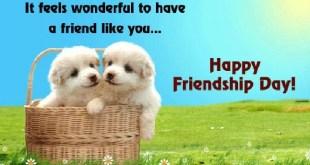 happy friendship day 2017 image