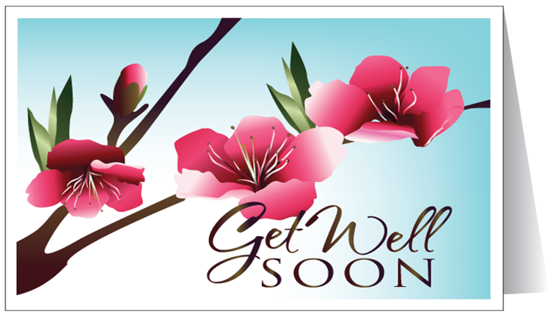 Get Well Cards Hd Images Pictures Get Well Soon Messages