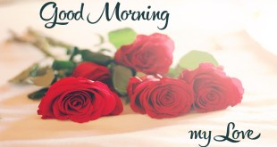 good morning pics hd image 2018