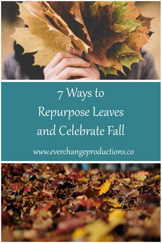 There are so many good uses for the fall leaves. Instead of packing them away in the landfill, we can repurpose leaves and celebrate fall!