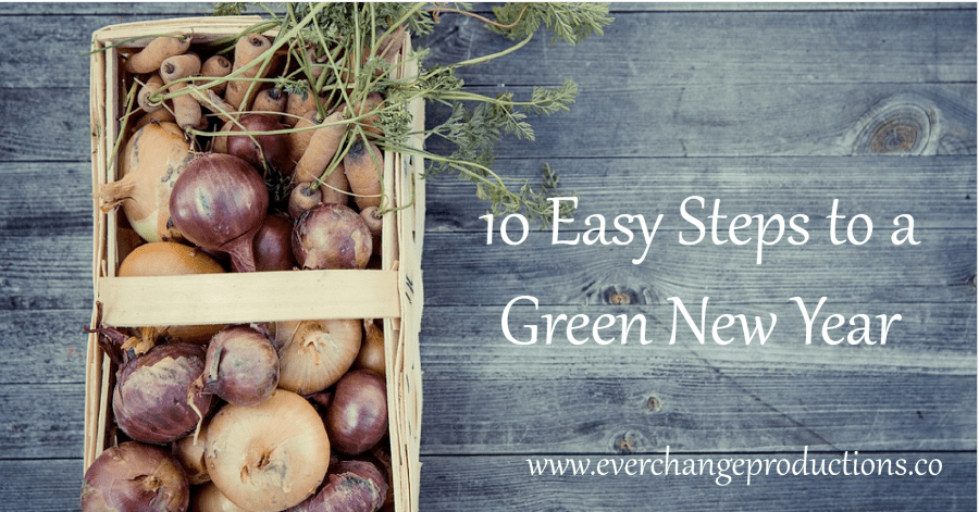 here are so many options for sustainable resolutions. If it seems a bit overwhelming, start with these 10 Easy Steps to a Green New Year.