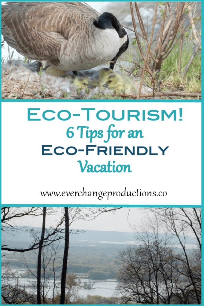Eco-tourism is a great way to support our planet and the people on it, while still getting to experience all our beautiful world has to offer. It is essential to protect nature so future generations. It takes all of us doing our part.