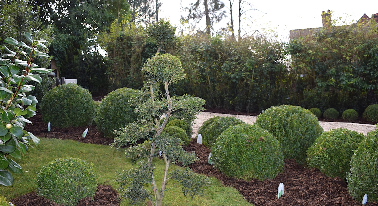 Everchanging Garden Design in Hertfordshire and North ...