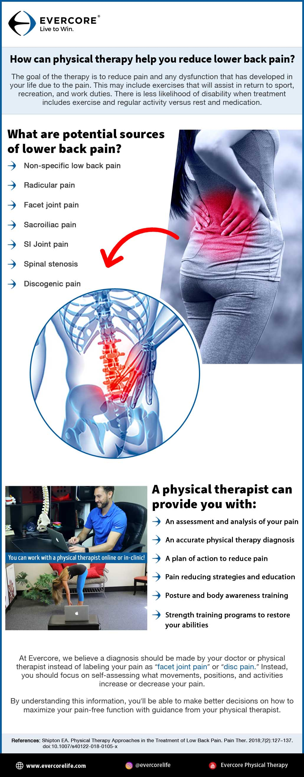 physical therapy lower back pain infographic