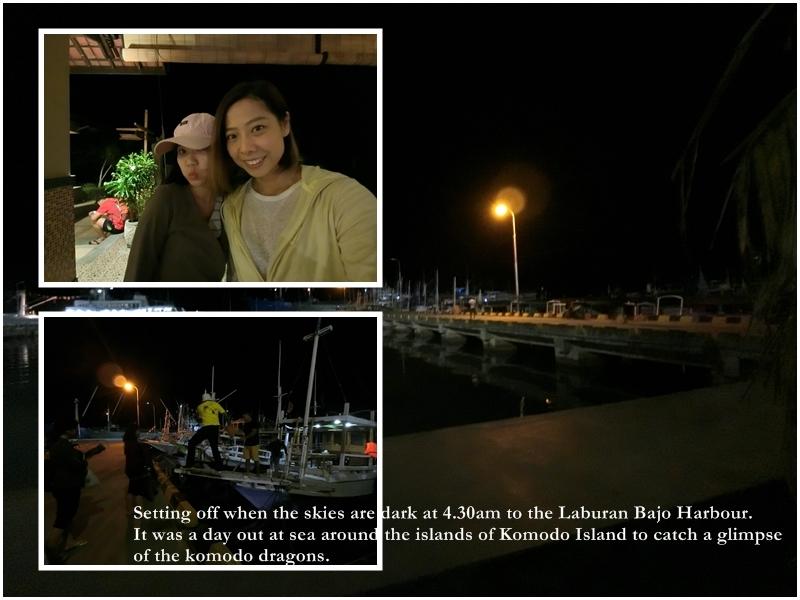 Labuan Bajo Harbour Komodo Island Cruise