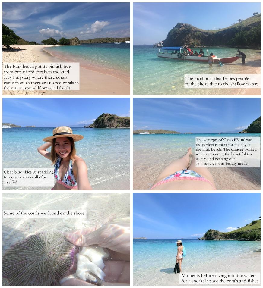 Flores Komodo Island Pink Beach Indonesia