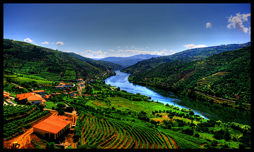 Letter from Portugal: Down in the Valley, Up With the ...