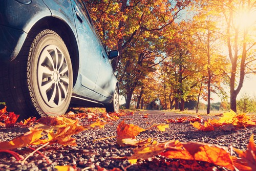 Car driving in autumn