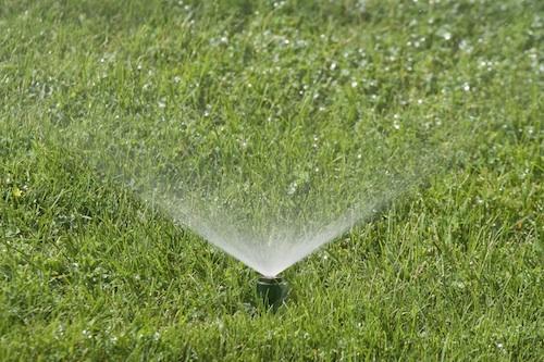 Image result for Sprinkler System istock