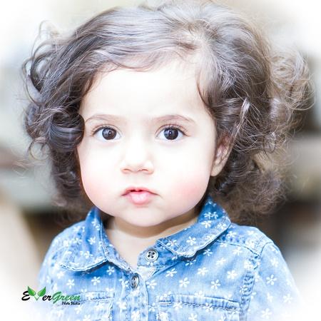 Shahed Sohrabi Blog