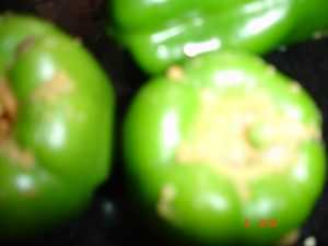 DSC01742  Stuffed Capsicum (microwave cooking) DSC01742 300x225