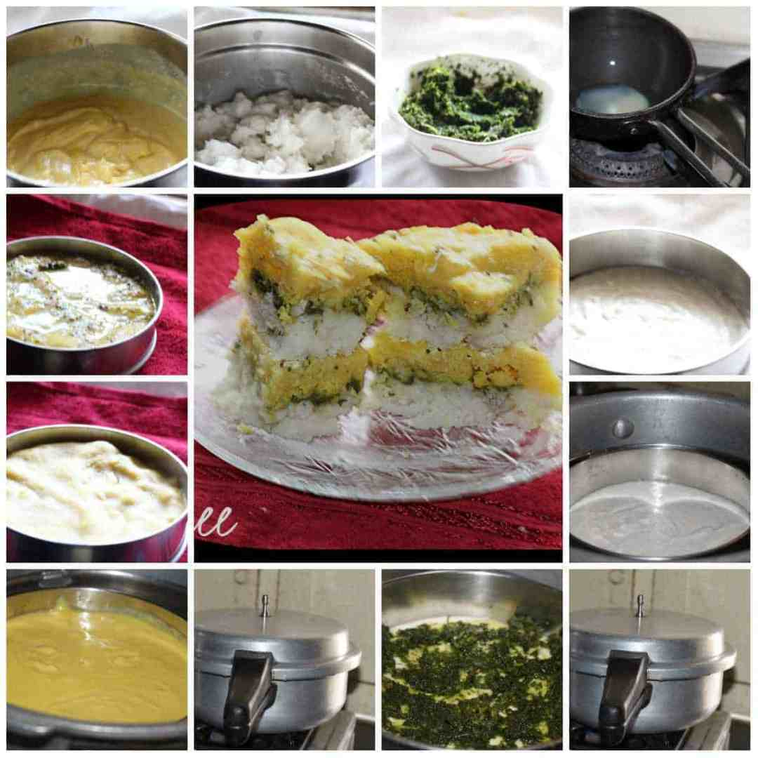 tricolour dhokla at a glance