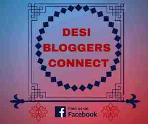 Desi Bloggers Connect