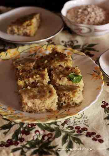 oats dhokla