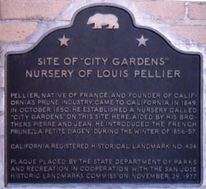 pl_pellier_city_gardens_crhl434