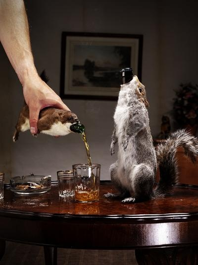BrewDog Taxidermied Squirrels