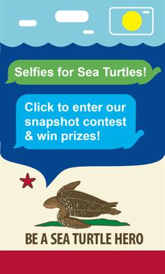 Selfies for Leatherback Sea Turtles