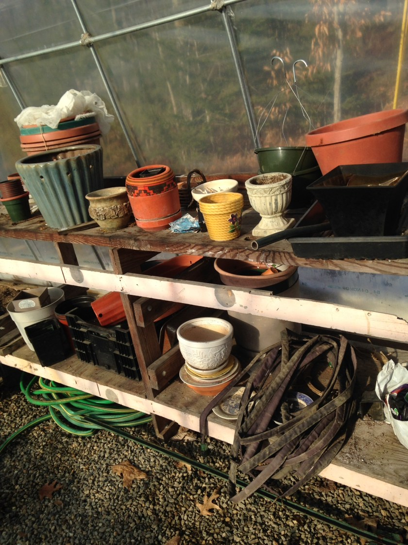 The messy potting bench.
