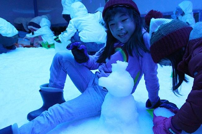 snowpiggy