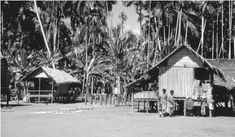 Houses in Eware Village in Morobe.