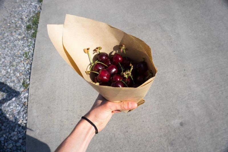 ciliegie sul cammino di santiago