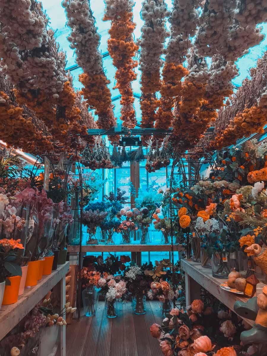 AMSTERDAM mercato dei fiori-2