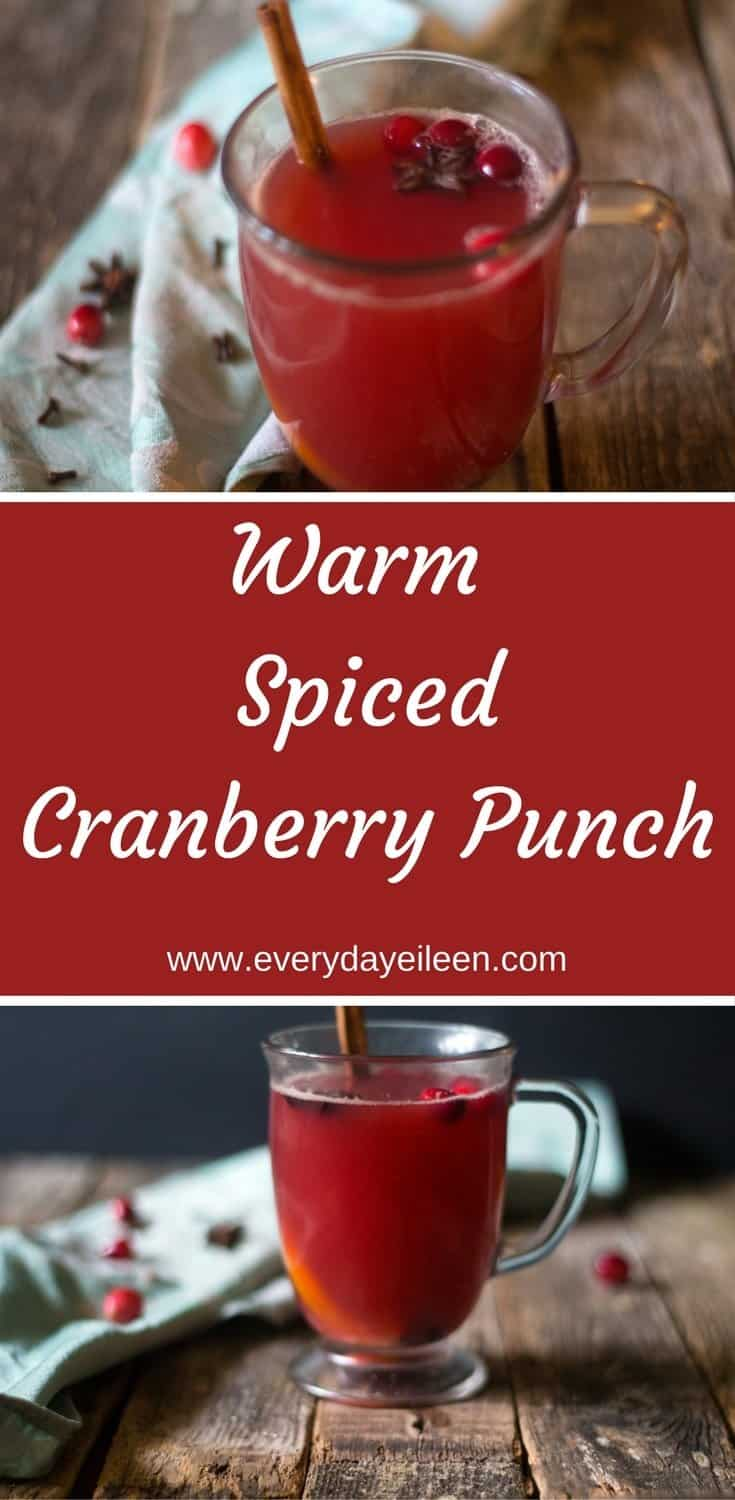 Warm Spiced Cranberry Punch