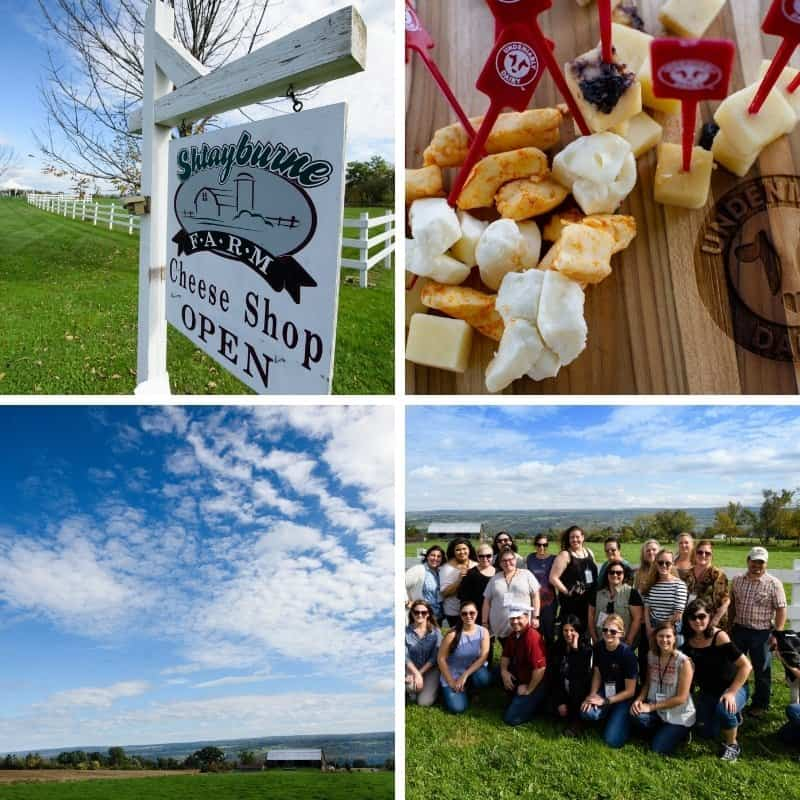 The #NYDairyTour2018 in Canandaigua NY at Shtayburne Farm with food bloggers and a variety of pictures from the tour.