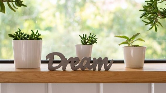 Dreams Do Come True – Achieving A Grand Dream