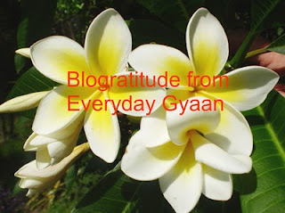 Blogratitude