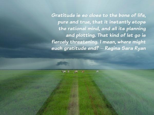 Gratitude Circle Launch