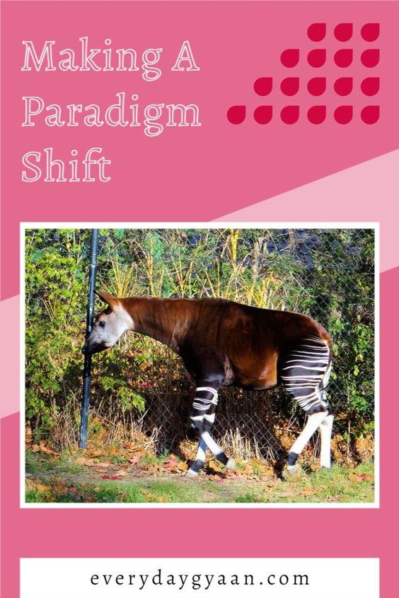 Making A Paradigm Shift