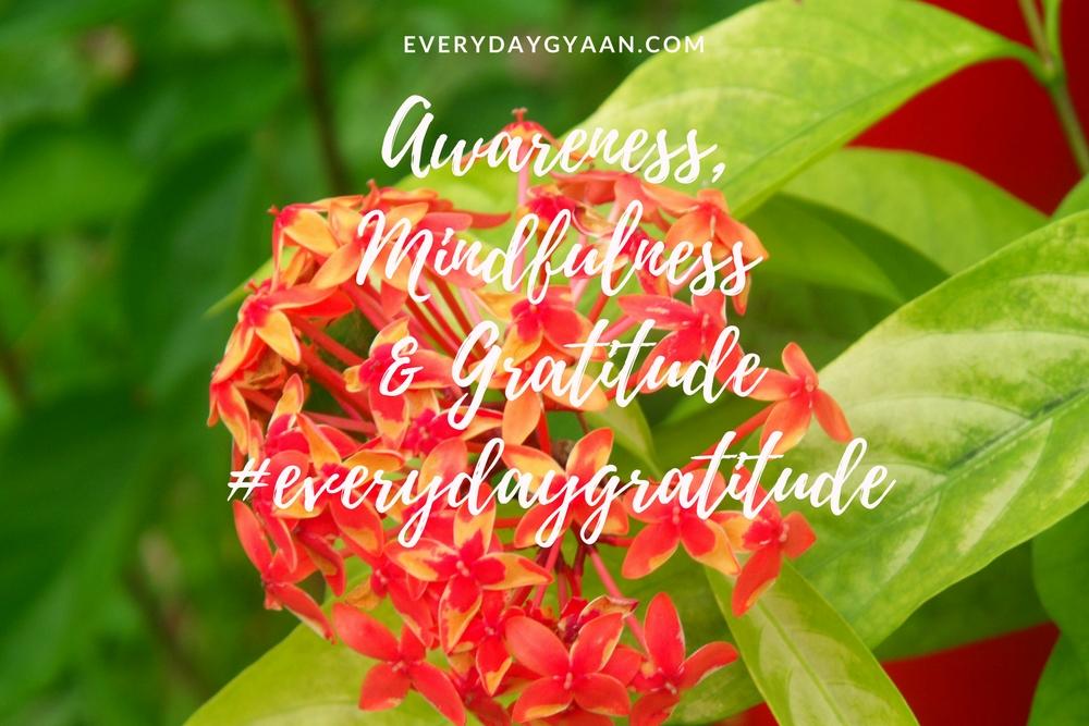 awareness mindfulness and gratitude