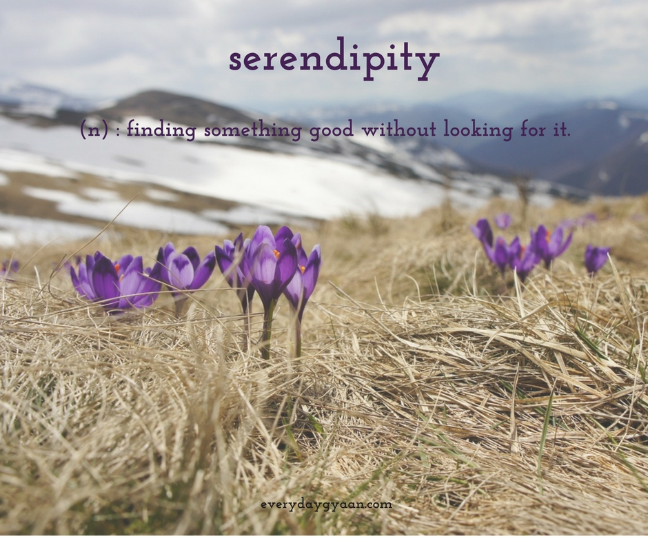 Is It Serendipity? #FridayReflections