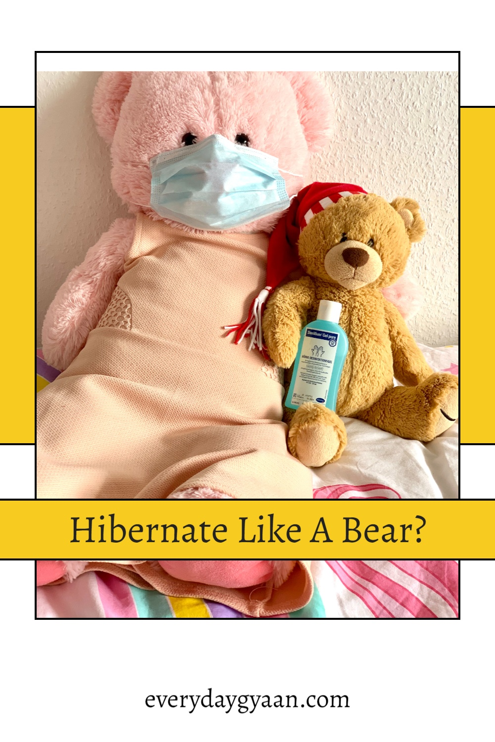 Hibernate Like A Bear?